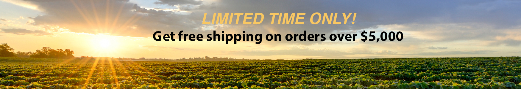 Limited time only! Get free shipping on orders over $5000